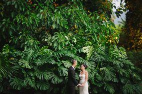 Carla Afonso - weddings & events