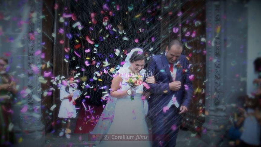 Corallium Films©