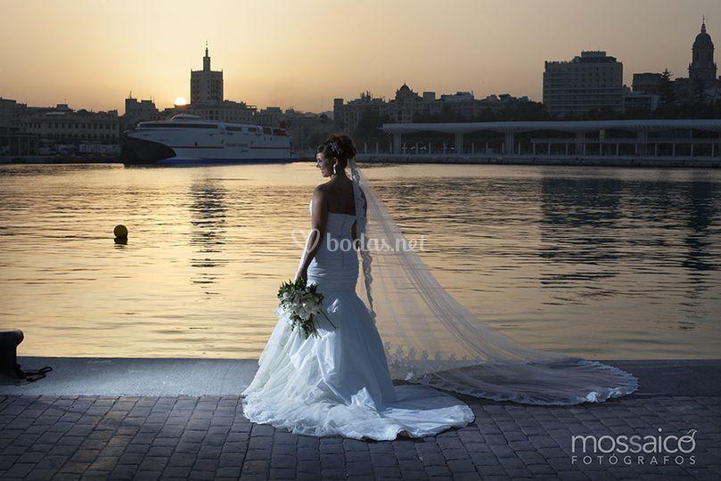 Mossaico Fotógrafos