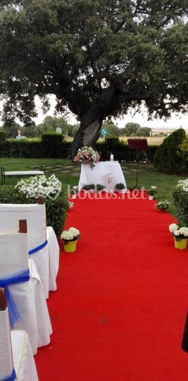 Ceremonia encina 2
