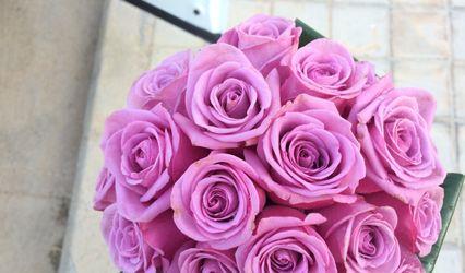 Flores Nuevas 1