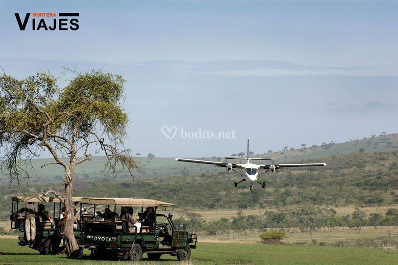 Safari en avioneta