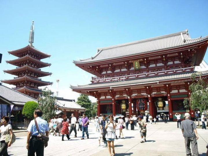 Japan Travellers