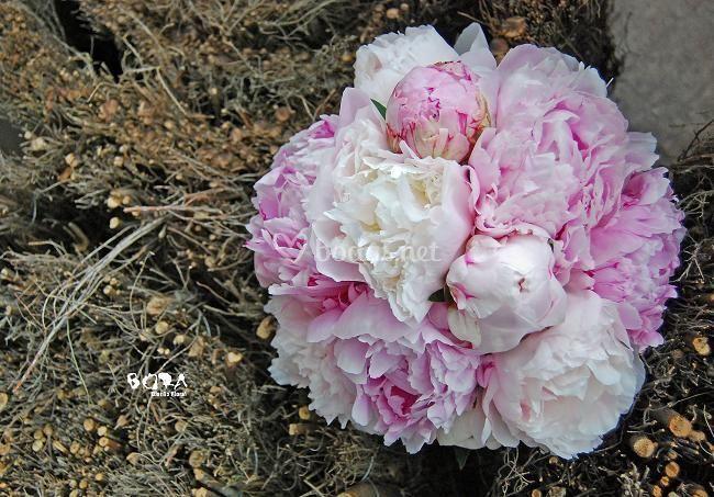 Bora Diseño Floral