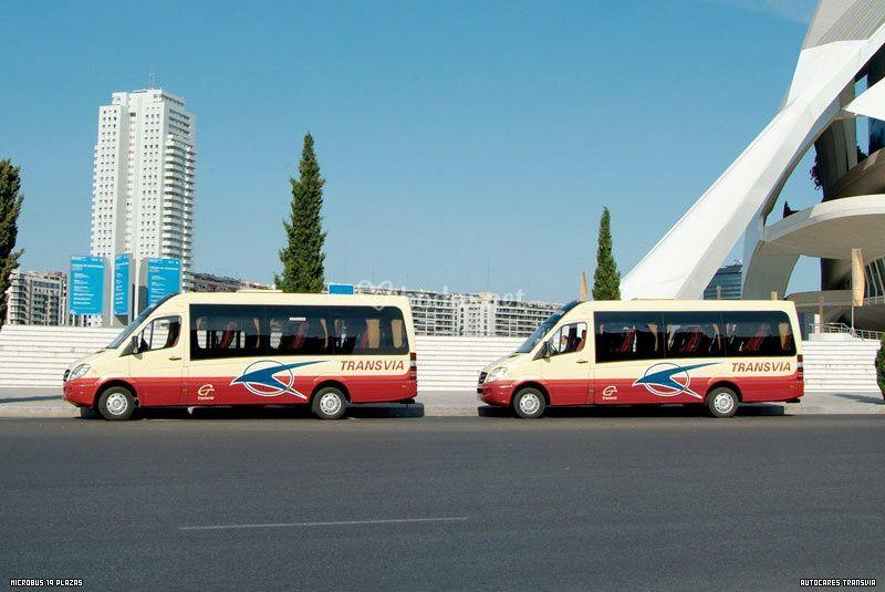 Minibuses y microbuses