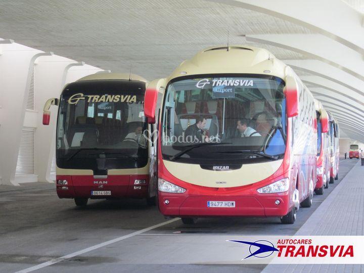Gran flota de autobuses
