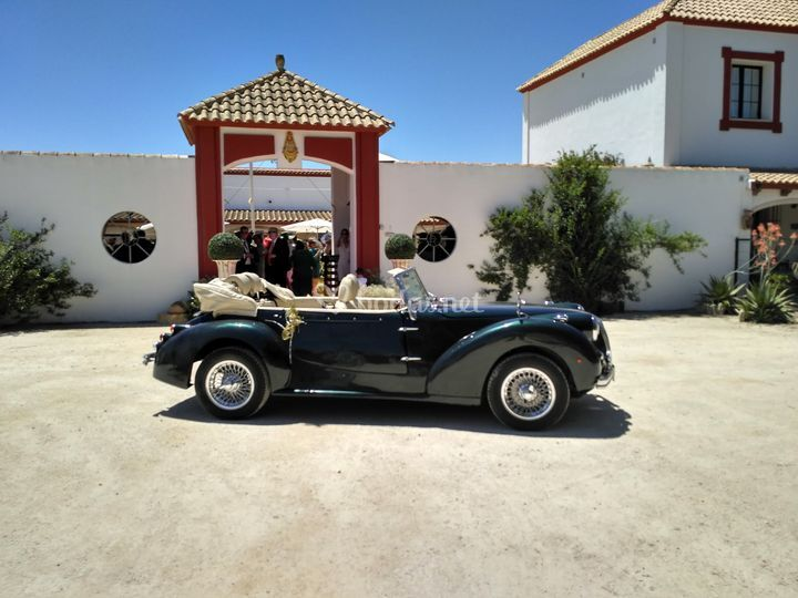 Juan Jose Solis - Carruajes y coches clásicos