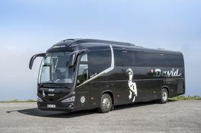 Autobuses y autocares David