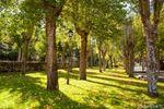 12.000 metros cuadrados de jardines