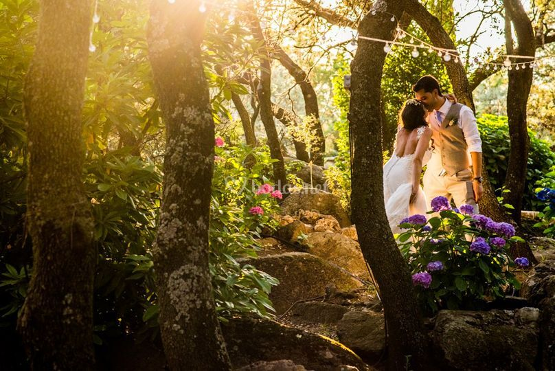 En el bosque