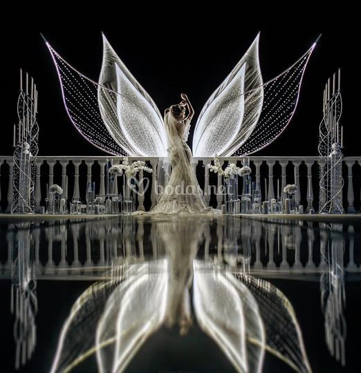 Alas mágicas de Nika Weddings