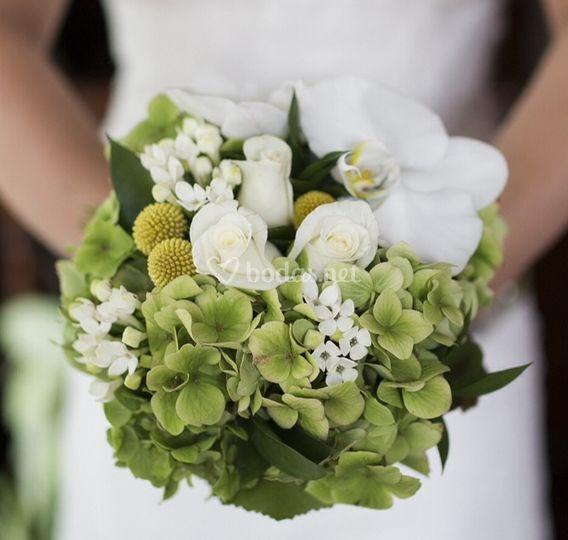 Ramo hortensia