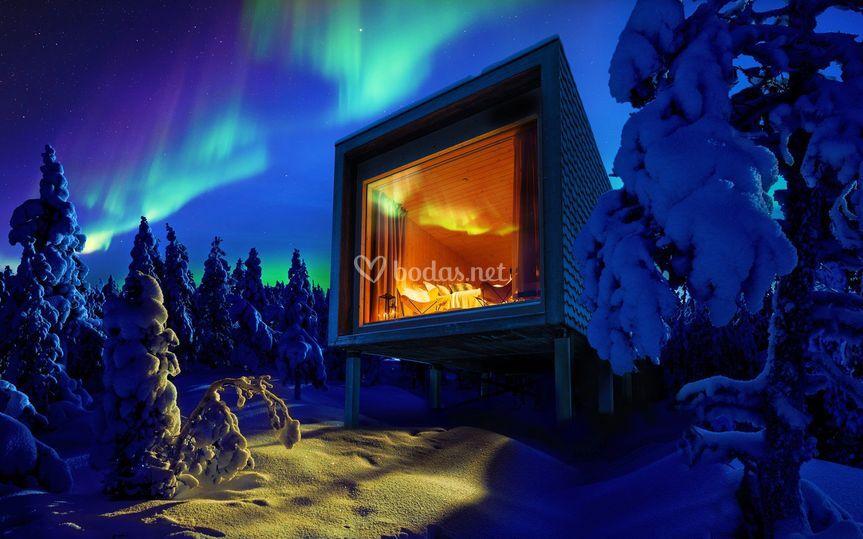 Suite entre árboles Laponia