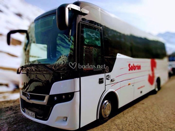 Midibuses 30-35 pax