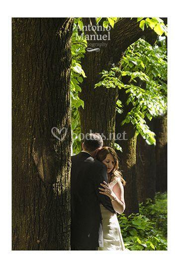 Pot boda