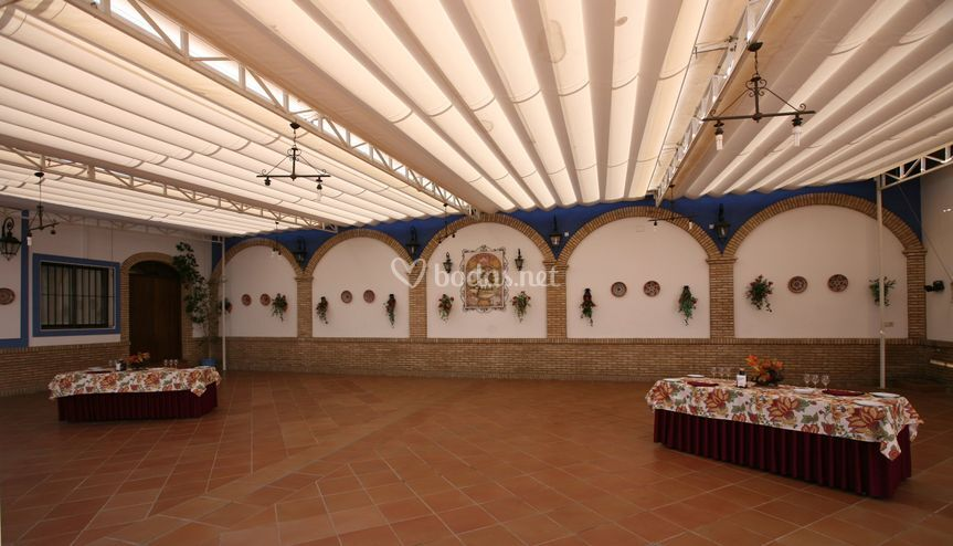 Patio-carpa