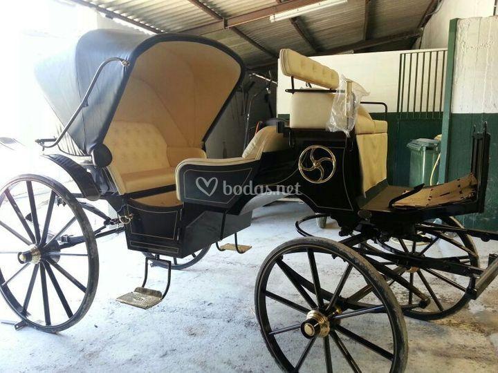 Carros de caballos
