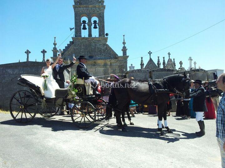 Finca Montemayor - Carros de caballos