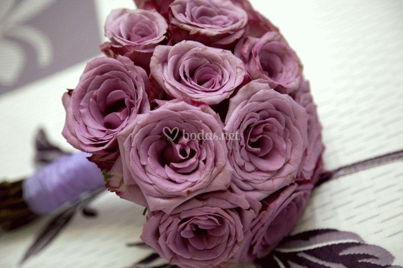 Rosa y violeta