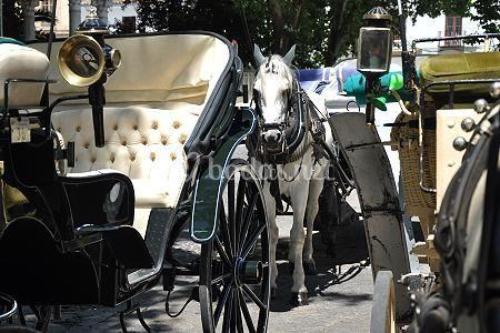 QuieroQuiero BBC - Coche de caballos