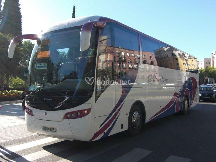 QuieroQuiero BBC- Autobuses
