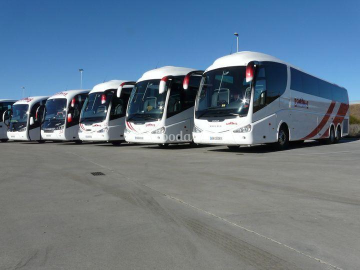 Flota de vehículos disponibles