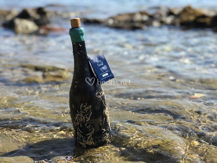 Mensaje en botella submarina