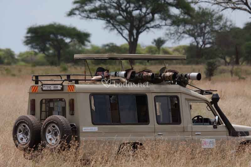 Un día de Safari en Tanzania