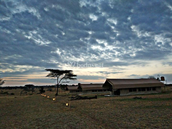 Sentir el corazón de Serengeti
