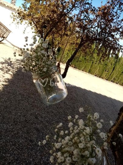 Detalle de las floras