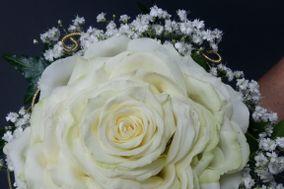 Caralt Floristes
