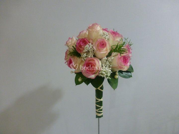 Rosa dolce vita