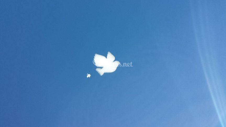 Nube en forma de paloma