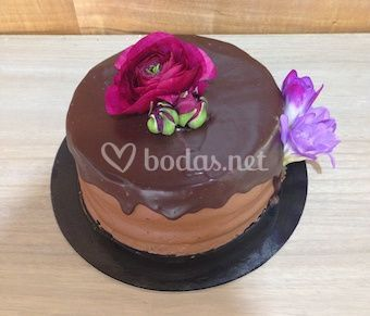 Stout beer chocolate cake