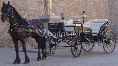 Carruaje para bodas