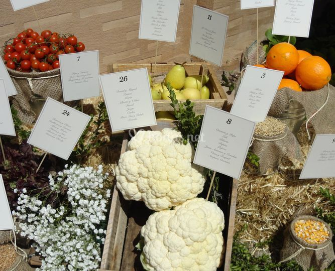 Seating plan frutas y verduras