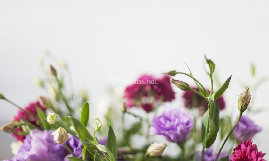 Flores WWL