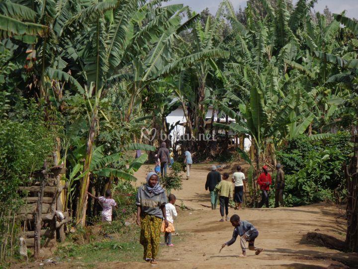 Visita cultural Arusha