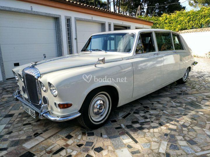 Daimler Ds420 Blanco Hueso