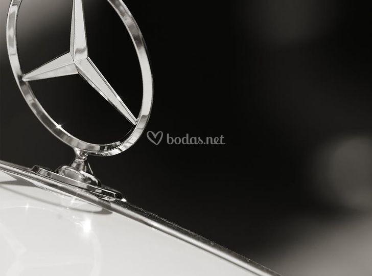 Detalle marca del coche