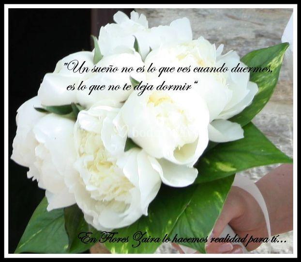 Flores Zaira