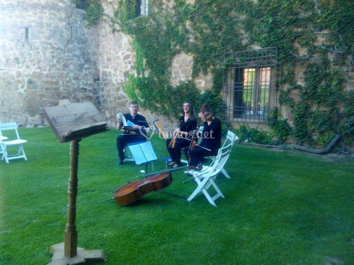 Cuarteto, San Gregoria