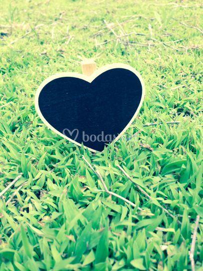 Corazón Daisy