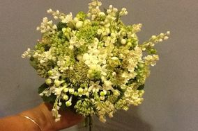 Flores Areka