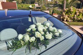 Flores Berta