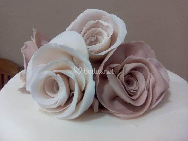 Especializados en flores