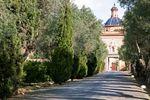 Emblem�tico camino de olivos.. de La Cartuja de Ara Christi - Gourmet Catering & Espacios Valencia