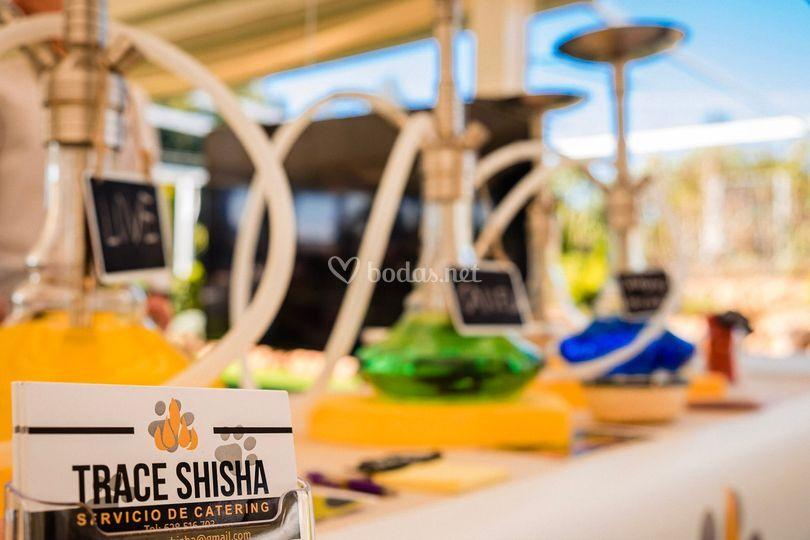 Trace Shisha