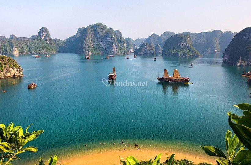 Vietnan
