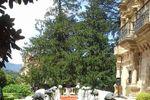 Boda civil fachada de Abba Palacio de So�anes